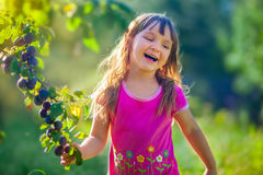 Girl with a plum brunch Royalty Free Stock Photo