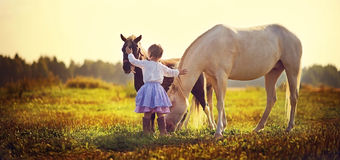 Girl and ponies. A cute white girl in jockey boots walking among little ponies in the field on a sunny summer day Royalty Free Stock Images
