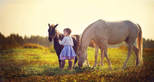 Girl and ponies Royalty Free Stock Images