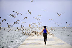 Girl on a pontoon with seagulls Royalty Free Stock Images