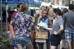 Girl with a ponytail, wearing shorts, with a small dog to hang out with her friends on Saturday Broadway Market Stock Photo