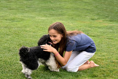 Girl and poodle dog stock photo