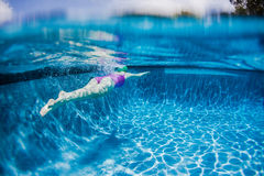 Girl Pool Underwater Royalty Free Stock Photography