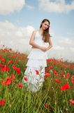 Girl in poppies Stock Image