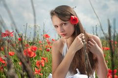 Girl in poppies Royalty Free Stock Photo