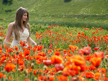 Girl in poppies Stock Photo