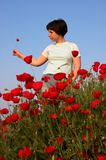 Girl on the poppies field looking on the alone poppy. Girl on the poppies field and blue sky 3 Stock Photos