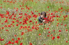 Girl with poppies squatting & smelling Royalty Free Stock Images