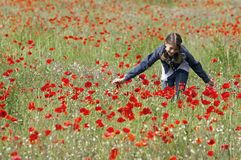 Girl with poppies stroking Stock Photography