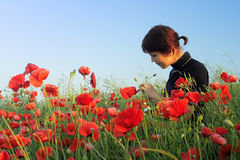 Girl in poppy field. The young girl is in poppy field Stock Photography