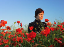 Girl in poppy field. The young girl is in poppy field Royalty Free Stock Photo