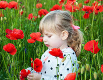 Girl in the poppy field Royalty Free Stock Image