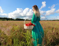 Girl on a poppy field. Relax of the girl in the field with poppies Stock Image