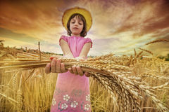 Girl portait in the wheat field Stock Image