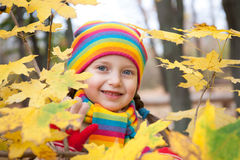 Girl portrait in autumn Stock Images