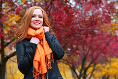 Girl portrait in autumn season, background from red and yellow leaves Stock Photography