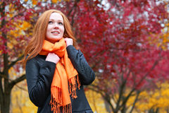 Girl portrait in autumn season, look up, background from red and yellow leaves Royalty Free Stock Image