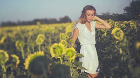 Girl. Portrait of the beautiful happy girl with a sunflowers. shots stock video