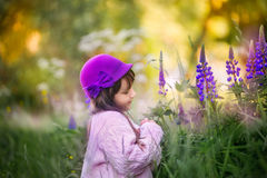 Girl portrait with lupine flowers Royalty Free Stock Images