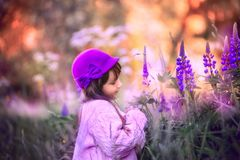 Girl Portrait With Lupine Flowers Stock Photography
