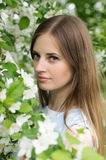 Girl posing against a background of flowering trees Royalty Free Stock Images