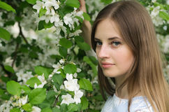 Girl posing against a background of flowering trees Stock Images