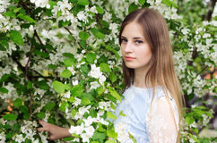 Girl posing against a background of flowering trees Stock Photography