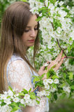Girl posing against a background of flowering trees Stock Photos