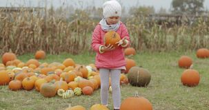 Girl posing with bright pumpkin in yard stock video