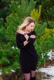 Girl posing in pines Stock Photos
