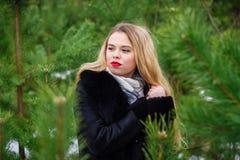 Girl posing in pines Stock Image