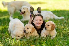 Girl is posing with puppies stock photo