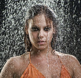 Girl posing in the rain Stock Photography