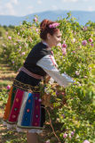 Girl posing during the Rose picking festival in Bulgaria Stock Photos