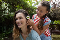 Girl positioning white flower in hair of mother. At backyard Royalty Free Stock Photo