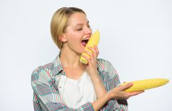 Girl practice eating only or mostly food uncooked and unprocessed. Woman farmer bite yellow corn cob on white background. Girl rustic style hold ripe corn royalty free stock photos