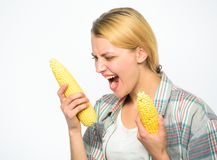 Girl practice eating only or mostly food uncooked and unprocessed. Woman farmer choose yellow corn cob on white. Background. Girl rustic style hold ripe corn royalty free stock image