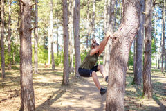 Girl practicing fitness. Girl is practicing freerunning inside a pine forest. She is climbing up a tree stock image
