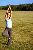 Girl Practicing Yoga In Field. Girl practicing yoga in a summer meadow royalty free stock photography
