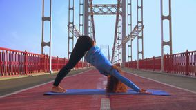 Girl practicing yoga in the morning. Young slim woman doing asana dog facing downward in the early morning on the bridge. caucasian sportswoman with curly hair stock video