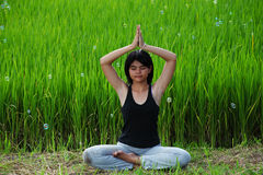 Girl practicing yoga in paddy field Royalty Free Stock Photography