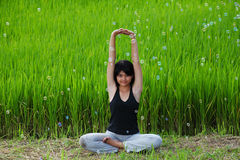 Girl practicing yoga in paddy field Royalty Free Stock Photos