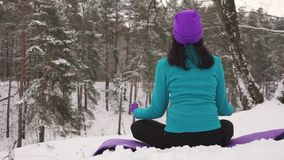Girl practicing yoga in the winter outdoors. Back view Stock Photos