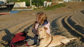 Girl preschool girl on the beach feeds the dog. Spring. Preschool girl with long red wavy hair in warm clothes sitting on the sand on the beach feeds and strokes stock video