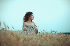 Girl in profile a field of wheat. Royalty Free Stock Photography