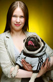 Girl and pug, studio shot. This image has attached release Stock Image