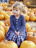 Girl pumpkin Stock Image