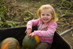 Girl at the Pumpkin Farm Stock Images