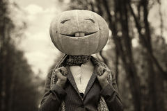 Girl with pumpkin head Royalty Free Stock Images