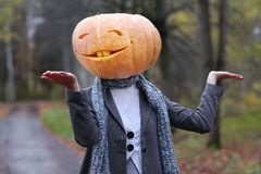 Girl with pumpkin head Stock Photography
